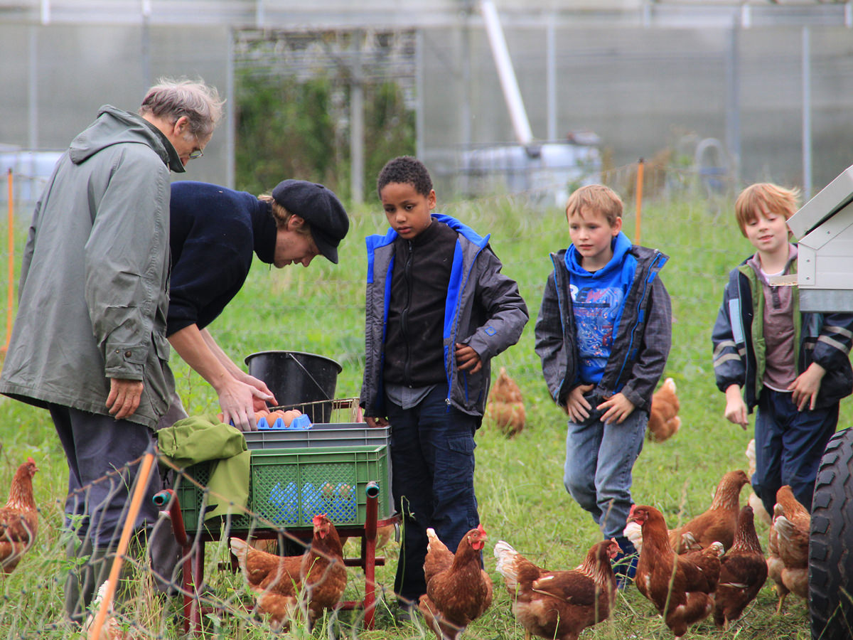 Transparenz schaffen - aktives Erleben bei der landwirtschaftlichen Erzeugung